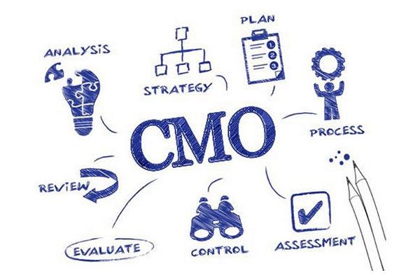 Vị trí CMO - Chief Marketing Officer trong tập đoàn, doanh nghiệp